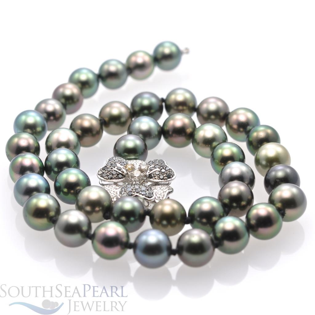 58833d0d5 Tahitian Pearl Strand Kona - Tahitian Pearls, Black Pearls, South ...
